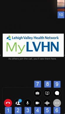MyLVHN App ExpressCARE Video Visit - VidyoConnect Inside Virtual Room